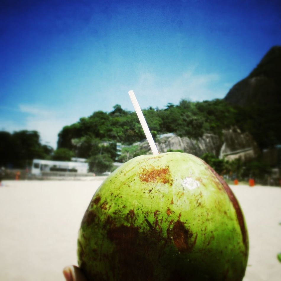Gesund und munter. Coconut Coconut Water Drinking Straw Food And Drink Fruit Healthy Eating Freshness Beach Superfood Brazil Rio De Janeiro Água De Coco  Healthy Food Healthy Health Drink Fitness Self Care  Green Color Indulgence Food Focus On Foreground Enjoying Life Timeout Relaxing