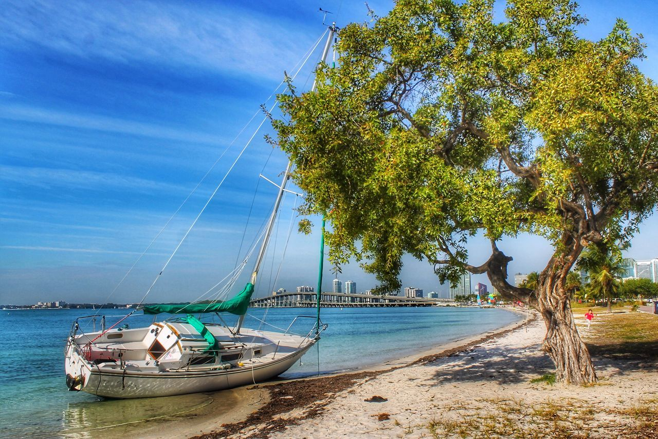 nautical vessel, water, tree, sea, transportation, beach, sky, mode of transport, day, nature, scenics, outdoors, moored, beauty in nature, sand, blue, horizon over water, no people