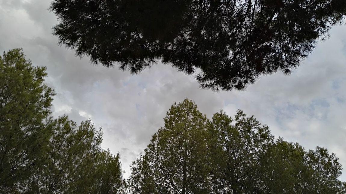 Life Love Photography Natura Imagine Srtreetphotography Summer Mpuntains Beautysky Felling Sky