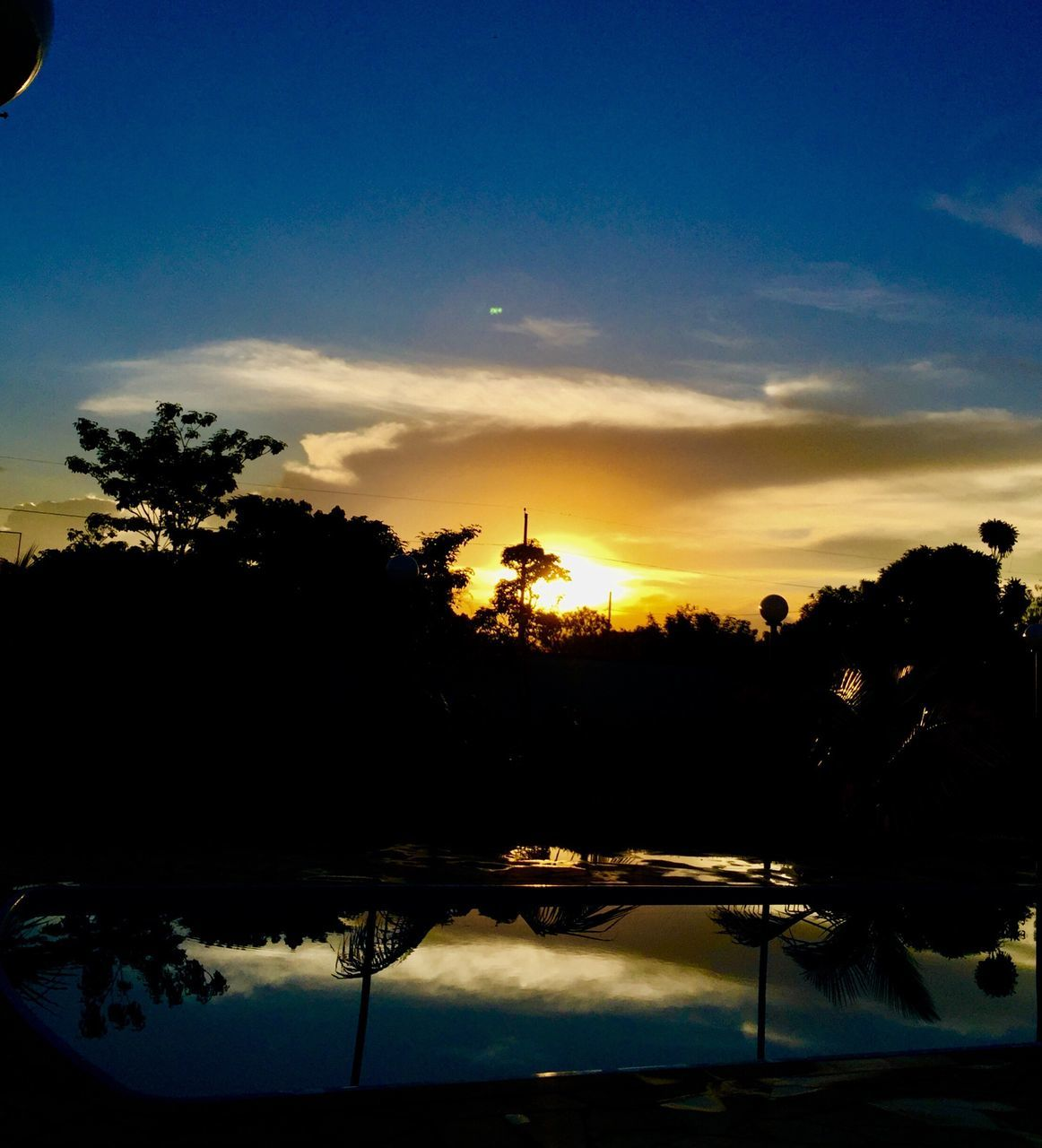 tree, sunset, silhouette, beauty in nature, scenics, sky, no people, nature, tranquil scene, tranquility, outdoors, palm tree, water, day