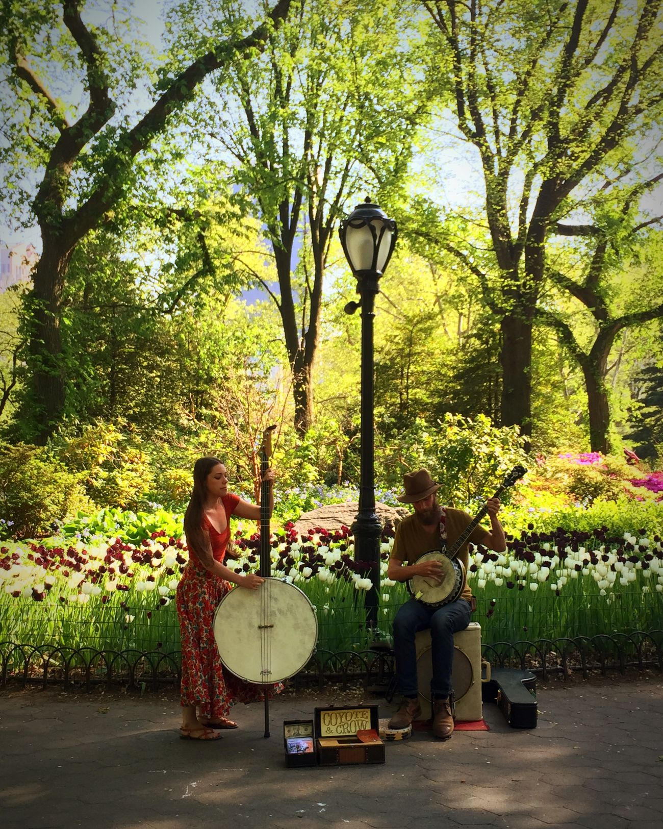 Great Folk Band