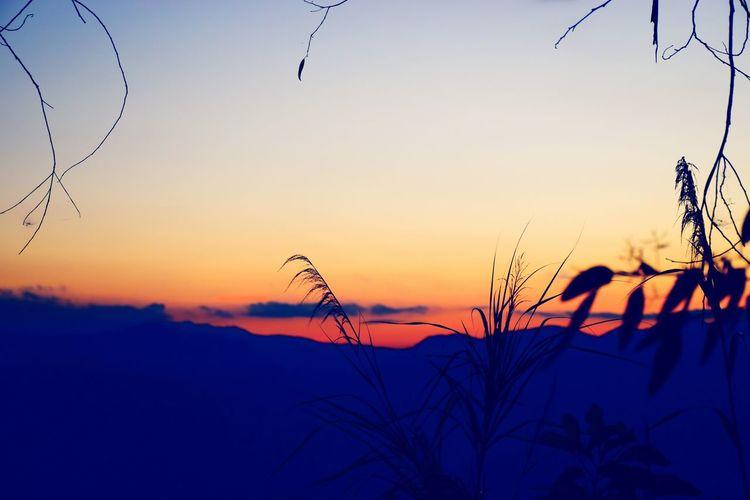 高黎贡山--日出