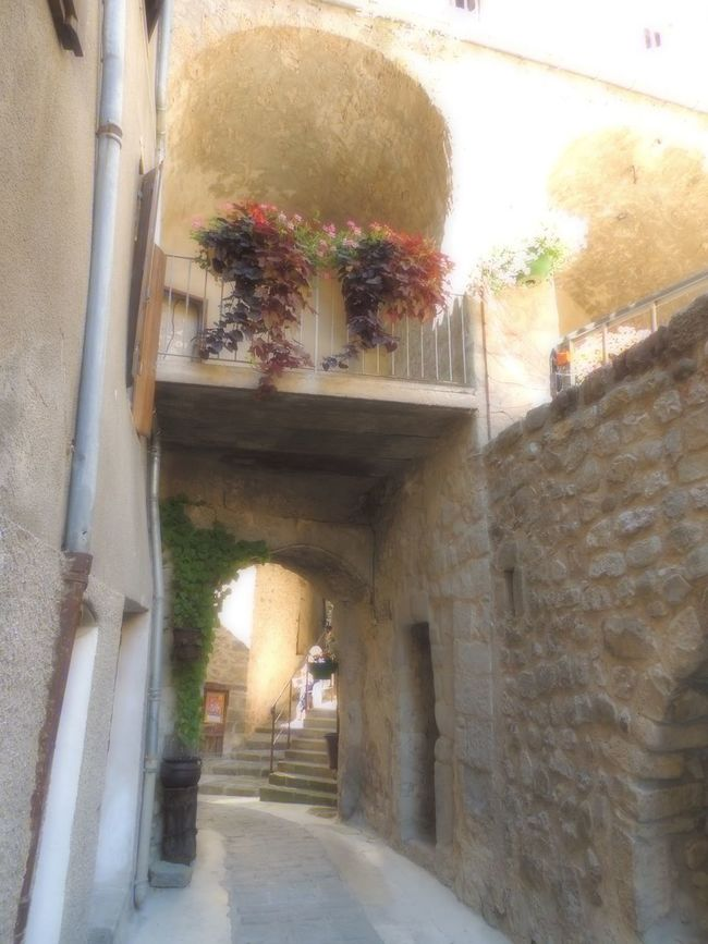 Alley Arch Architecture Archway Building Exterior Built Structure Day Diminishing Perspective Flower Pot Growth House Leading Long Narrow No People Old Town Plant Potted Plant Provence Steps The Way Forward Town Wall - Building Feature