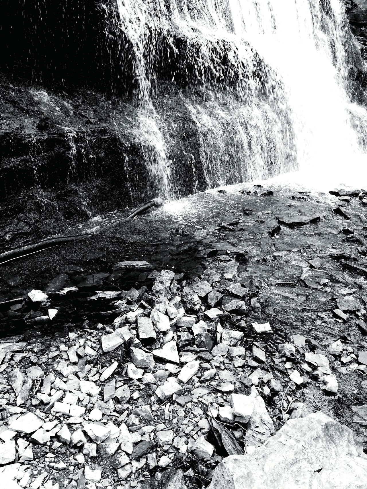 Nature Water No People Outdoors Beauty In Nature Close-up Day Waterfall Blackandwhite Hike Canada Waterscape Tranquility Pond Life Close Up Growth Scenics Beauty In Nature Tranquil Scene Landscape Nature