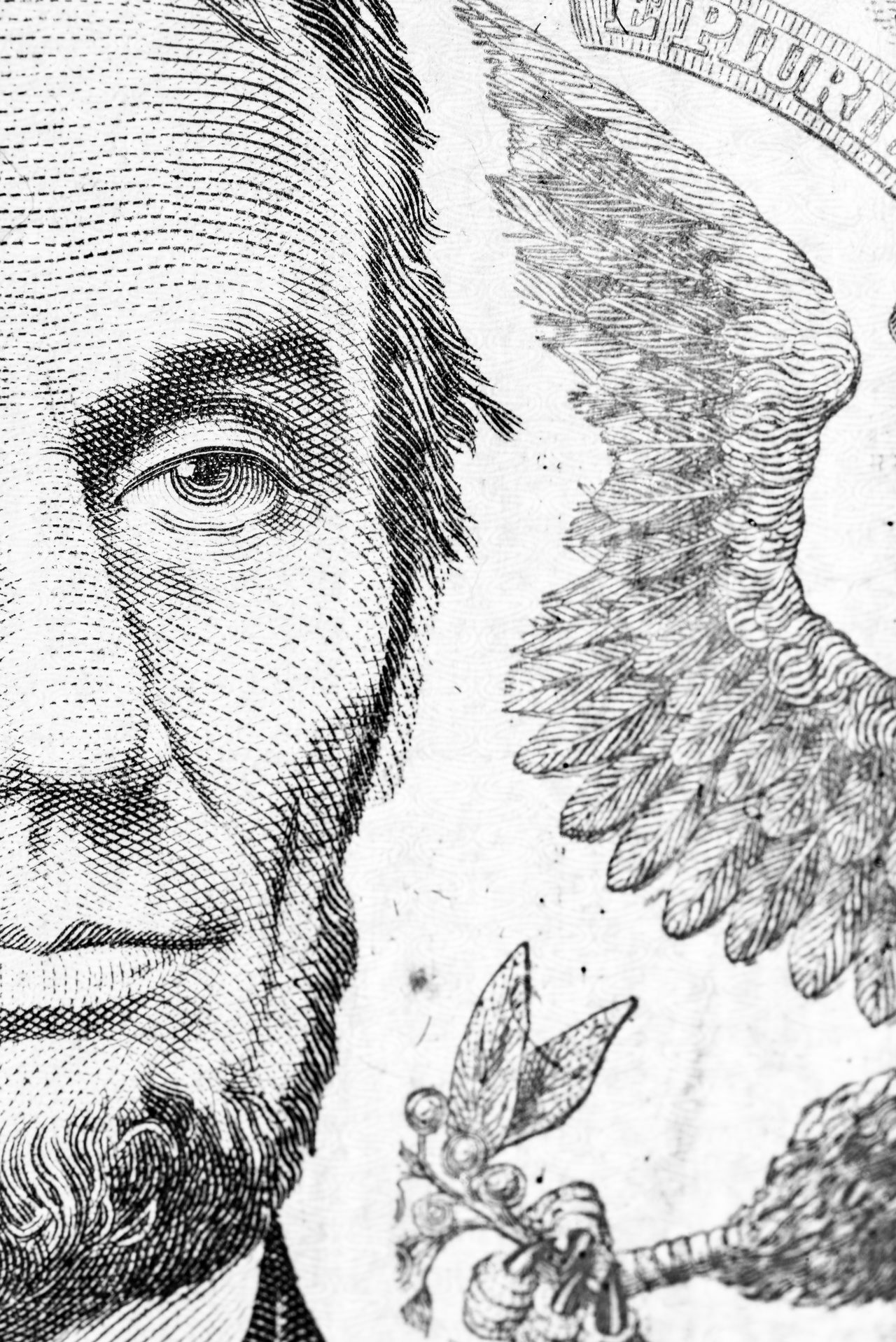 Monochrome detail of a five dollar note. 5 Dollars America Capitalism Cash Close-up Detail Dollars Engraved Image Human Face Lincoln Money Monochrome Multi-layered Effect No People Note USA President