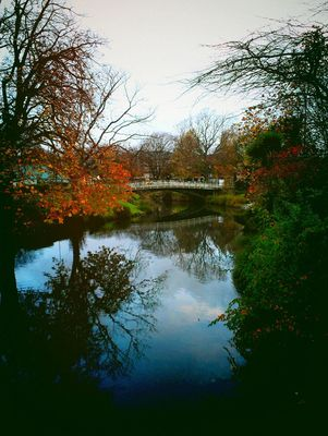 Autumn in Christchurch by Leashelle