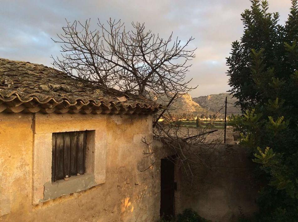 Antico... Bellezza Semplicità Priolo Gargallo Cielo Blu Siracusa Sicily Sicily Italia Siracusa Floridia  Maggio Caseggiati