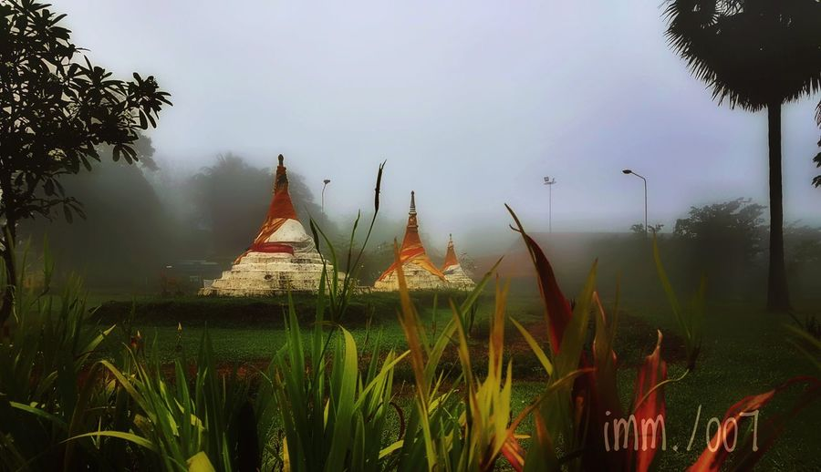 Three pagoder from thailand Social Issues Fog Business Finance And Industry Religion Ancient Architecture Landscape Travel Destinations Grass Arts Culture And Entertainment Dawn Lake Arrival No People Sky Outdoors Nature Sunset Beauty Water