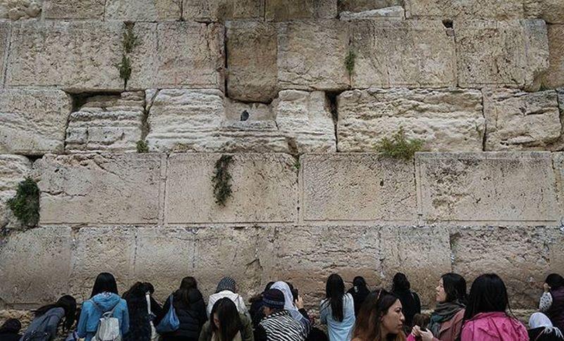 The Watcher of the Western Wall Prayer Jerusalem Jerusalemoftheday Westernwall Pigeon Nofilter Spring Holiday Travel Travelingram Seethesites Seetheworld  Wanderlust