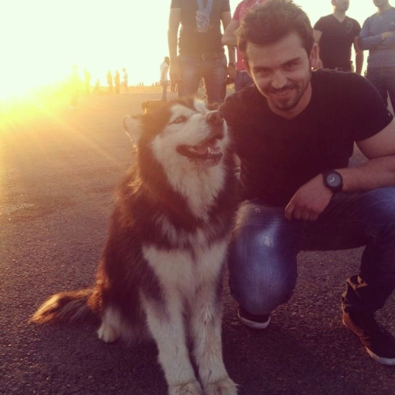 Fundaysunday Sunset Cute Husky beirut lebanon ?