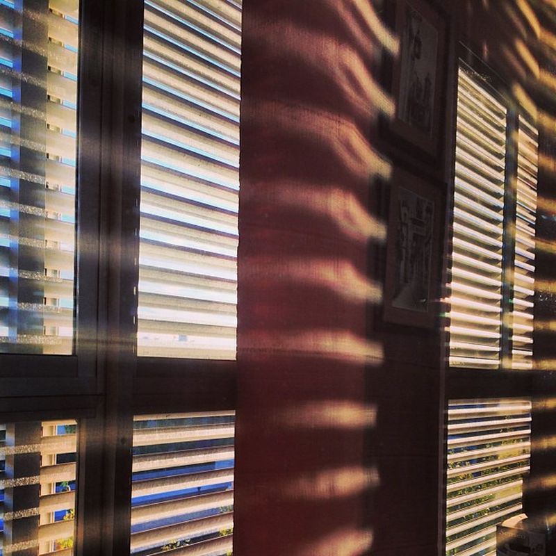 Igers Igerszgz Igerszaragoza Instagood Instamood Instaphoto Instapic FotoDelDia Photooftheday Picoftheday 2013 Autumn Otoño Zaragoza Zgz Desdemiventana Iphone5s Bestpic Bestphoto Bestoftheday Sun Sol 301 Ybajando