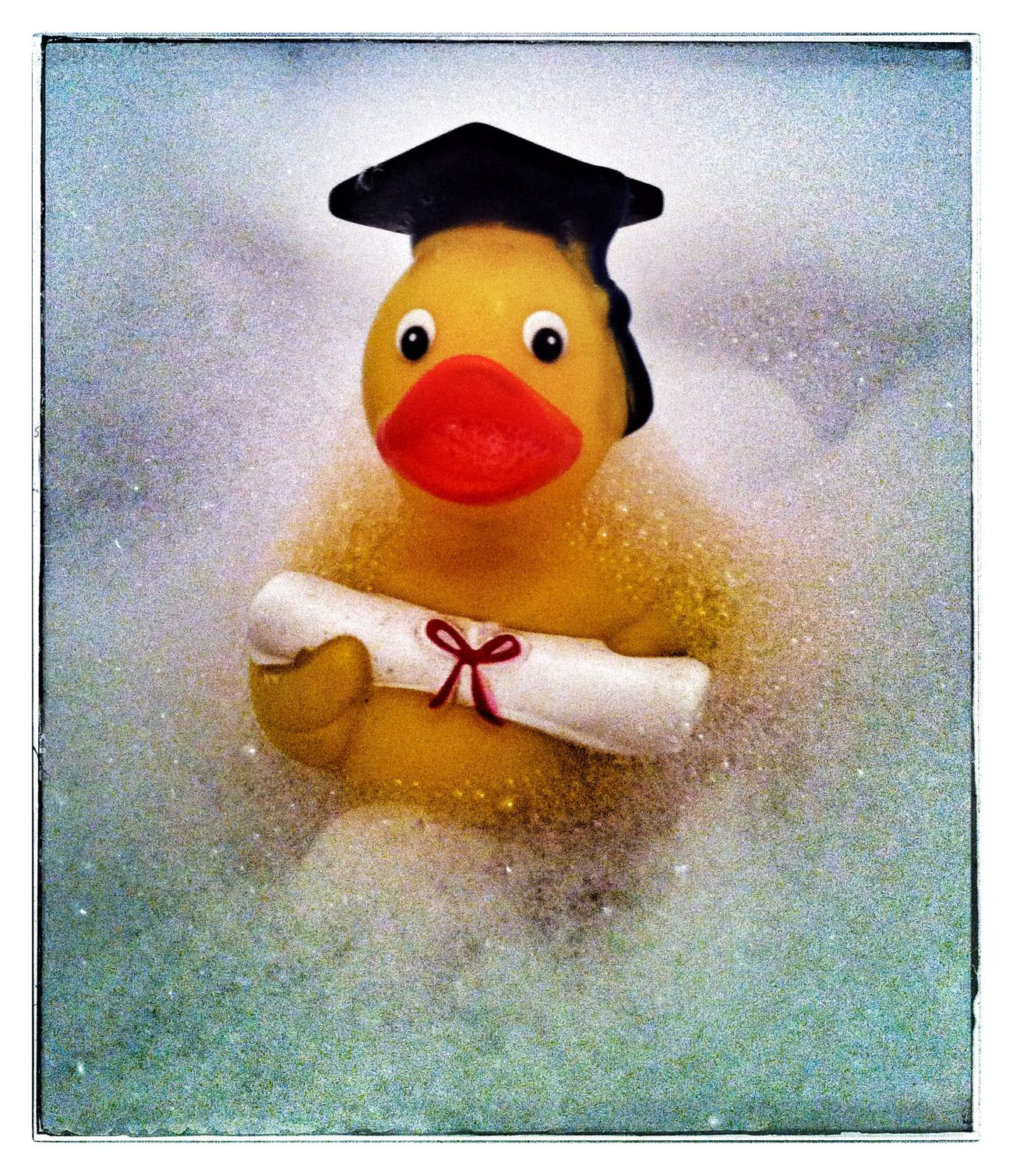 Duck Bathduck