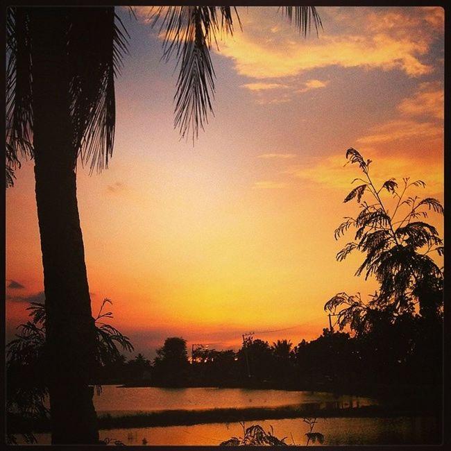 Dapithapon. Sunsettoday Sunsetlover Sunset Naturelover Fishpond Malolos Bulacan Philippines Photooftheday @loves_philippines @tuklas_pilipinas @photosharingcommunity @photosharingsunsets