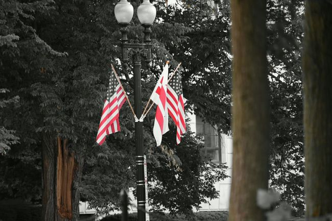 American Flag Flags WashingtonDC Patriotic Streetphotography Blackandwhite Photography Memorialday