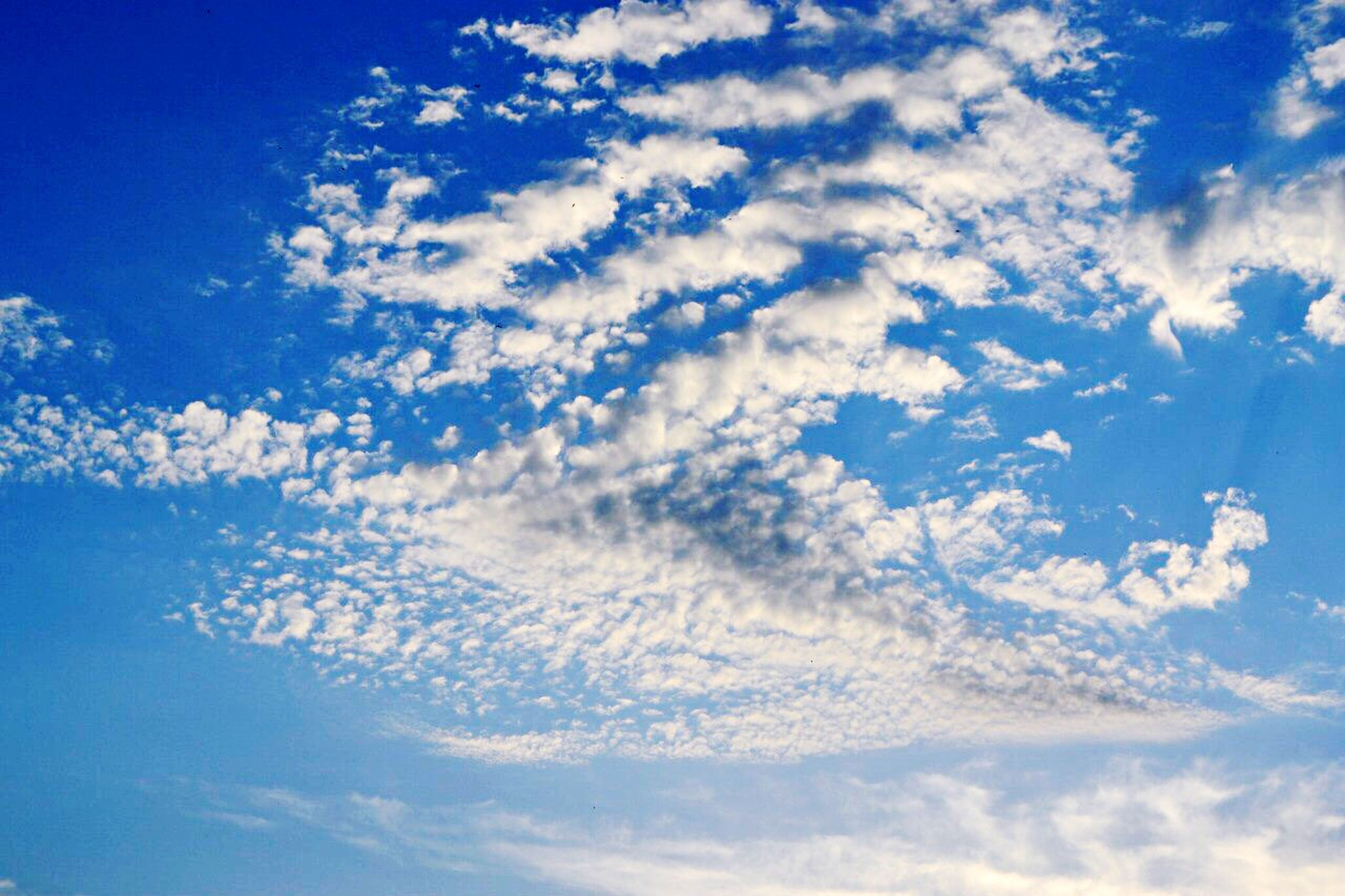 blue, sky, low angle view, cloud - sky, tranquility, beauty in nature, scenics, sky only, tranquil scene, nature, cloud, cloudscape, backgrounds, idyllic, cloudy, outdoors, day, no people, full frame, sunlight