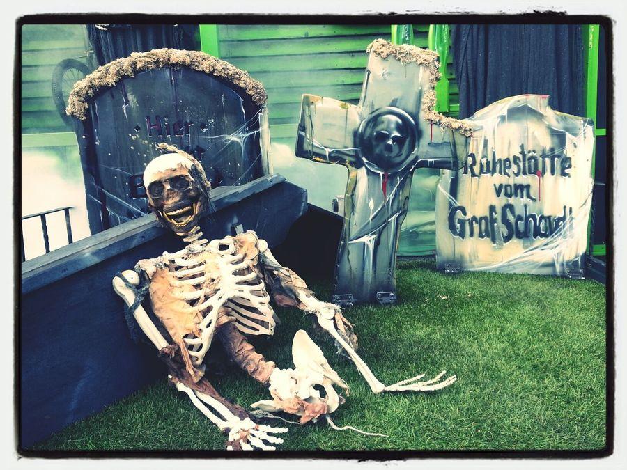 Scary Horror Skeleton Graveyard