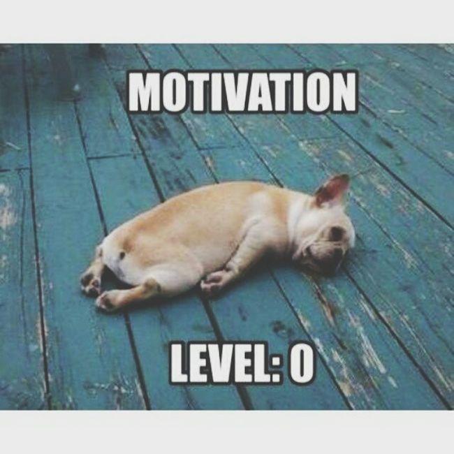 Tired Last Exam!!!! I Wanna Relax