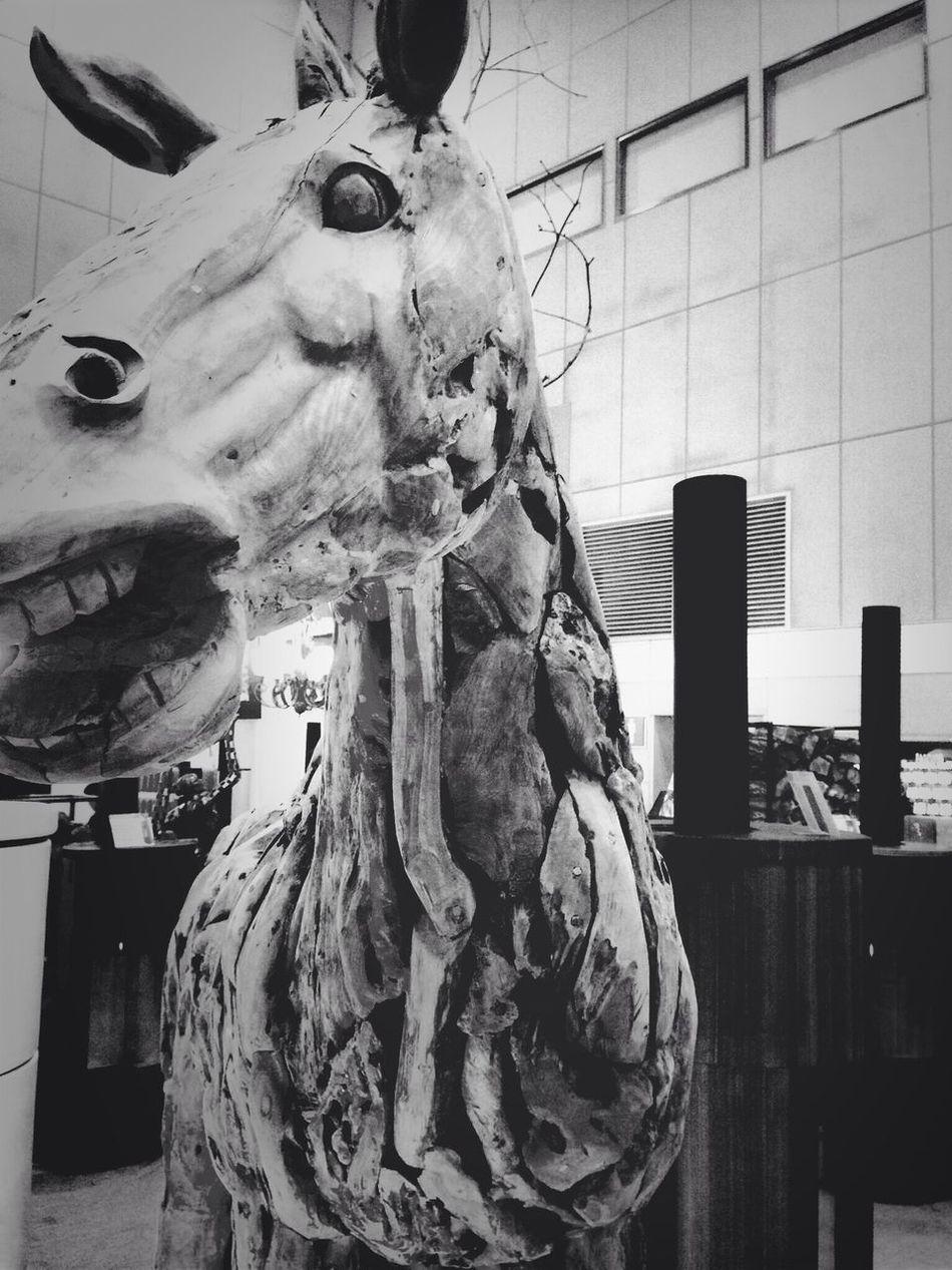 """일산 KINTEX 건축박람회에 있는 전시품 Wood Sculpture """" Horse """" 찰칵! ㅋㅋㅋ Black & White"""