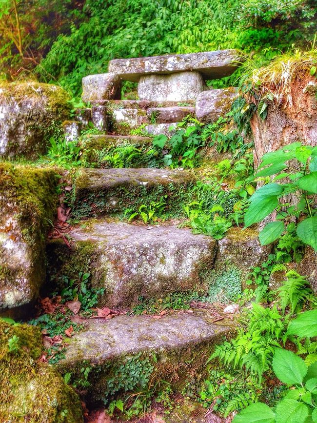 Creekside Trail Mountains And Valleys EyeMe Best Shot - Landscape EyeEm Nature Lover Popular Photos The Great Outdoors - 2016 EyeEm Awards Eyem Best Shots Nature_collection Waterfall #water #landscape #nature #beautiful Nobody Around Rock - Object Rock Formation Walkway Near The Waterfall I LoveJapan Hita City