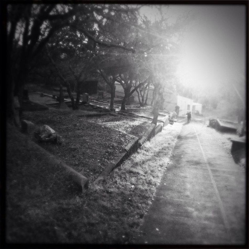 Cemetery Series