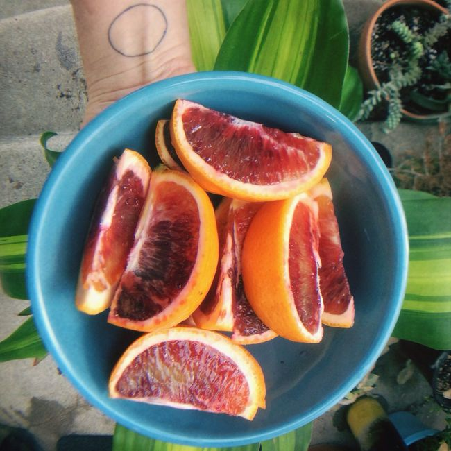 The harmony of blood oranges in the cloudy afternoon. Fruits California The Current Sea Living Bold Orange Citrus