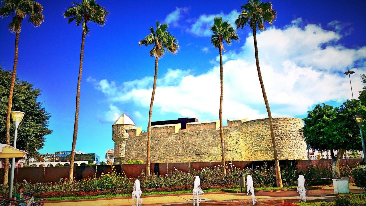 Castle Plam Trees Sky And Clouds Park Las Palmas De Gran Canaria La Isleta