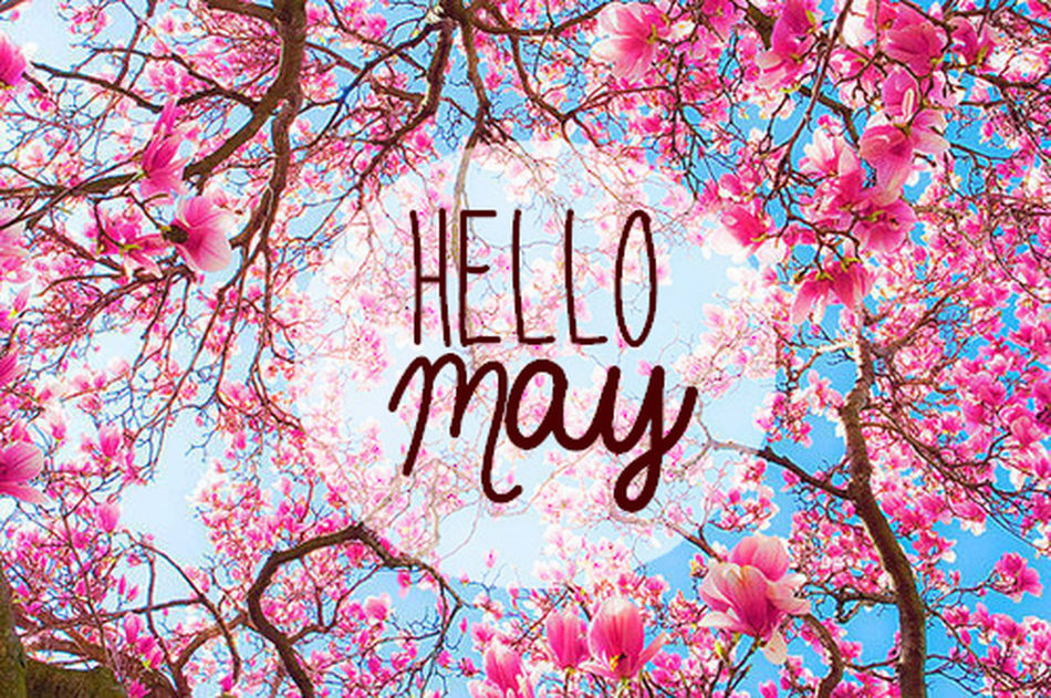 New Month May Trees Sun Flowers 🌸🌞❤️