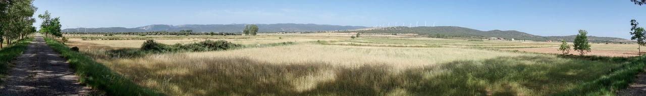 Agriculture Barracas Castellón Day Field Grass Landscape Nature No People Outdoors Rural Scene Scenics Sky Tree València