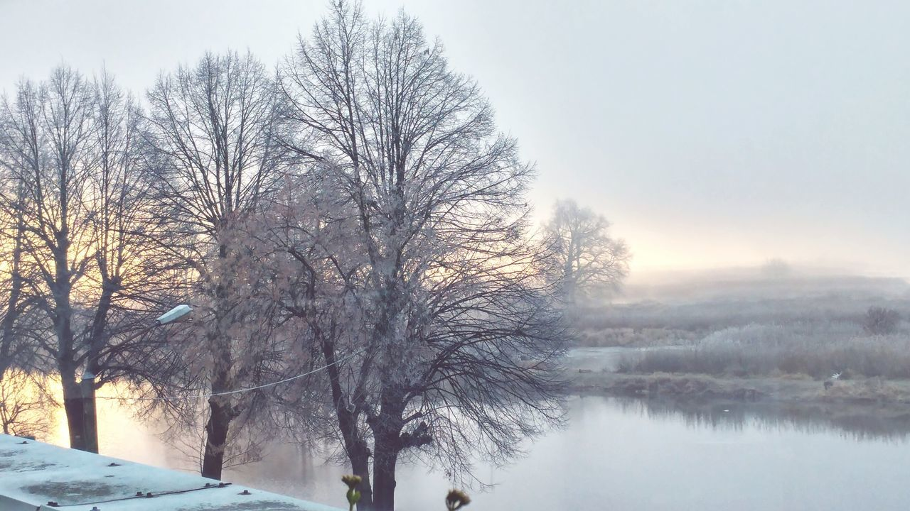 Morning View Poland Tree Cold Temperature Słubice