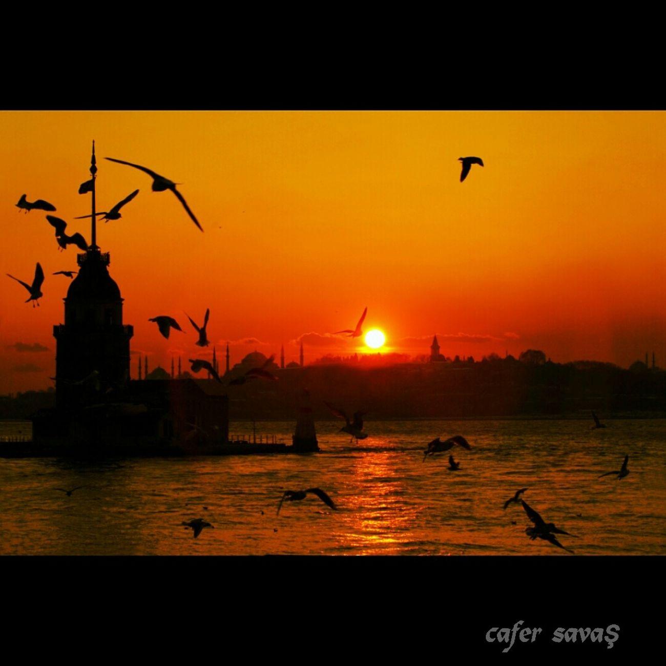 Istanbul Turkey Kizkulesi Sunset Photooftheday Marti Tarihiyarimada