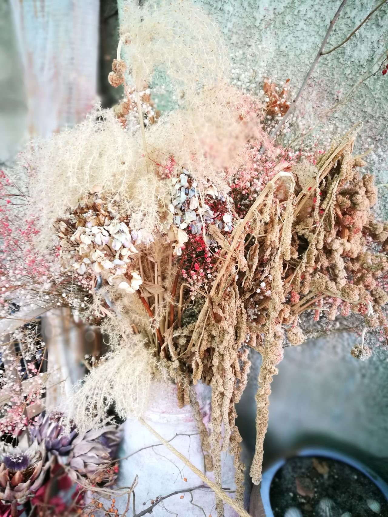 Nature Dried Flowers Forever Longlasting Flower Arangement nofilternoedit