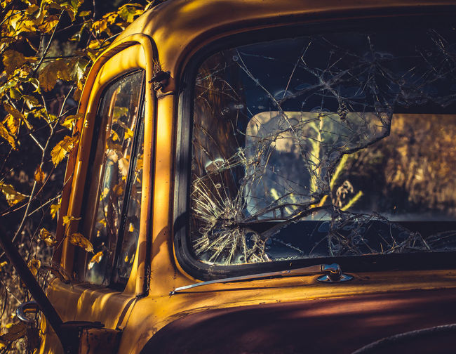 """""""if Only They Could Talk"""" Series 1956 Dodge Truck Abandoned Back In The Day Classic Close-up Derelict Dodge Golden If Only They Could Talk Old Overgrown Rustic Rusty Rusty Autos Rustygoodness Showcase April Smashed The Week On EyeEm Truck Trucks V8 V8 Engine Vintage Vintage Trucks Worn Out"""