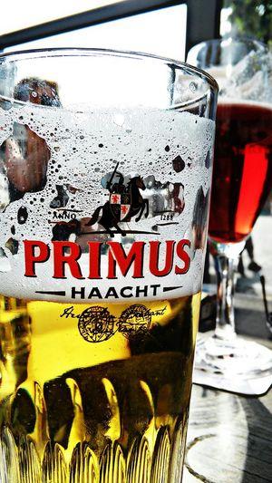 European pale lager, taste sooo good!... Primus Haacht Belgium Brewed Beers Belgium Beer Hunting! Antwerpen, Belgium Through A Tourist Eyes... International Beers