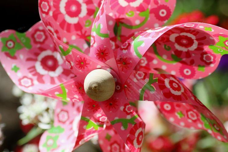 pinwheel toy - EyeEm pinwheel toy - 웹