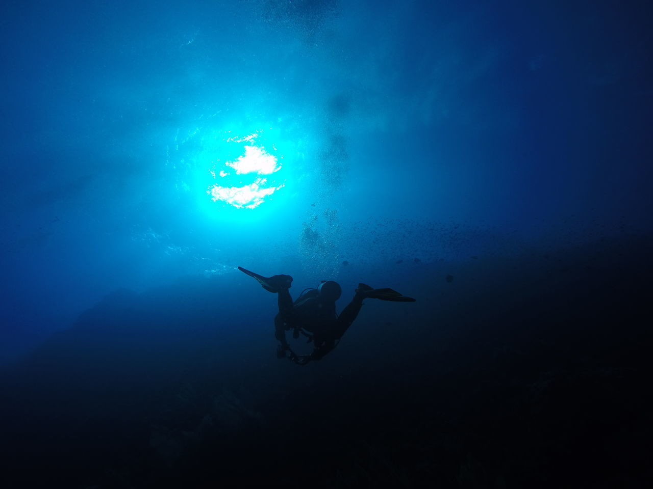 Adventure Ascending Blue Dark Deep Depth Diver Diving Divingphotography Egypt Leisure Activity Nature Nature Ocean Outdoors Red Sea Reef SCUBA Scuba Diving Sea UnderSea Underwater Underwater Photography Wildlife