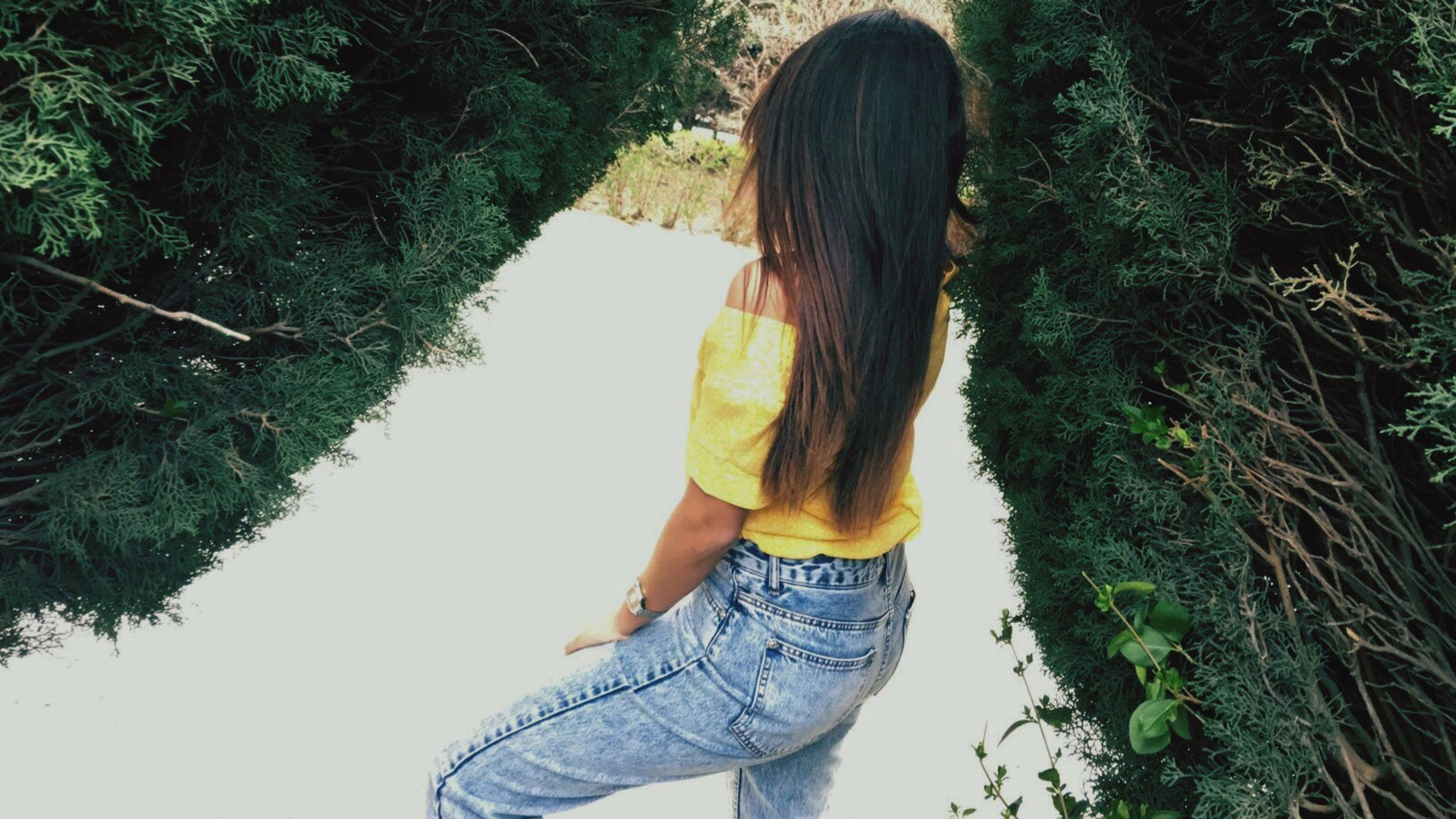 lifestyles, leisure activity, long hair, rear view, tree, person, standing, casual clothing, young women, young adult, three quarter length, waist up, water, day, nature, outdoors, full length, side view