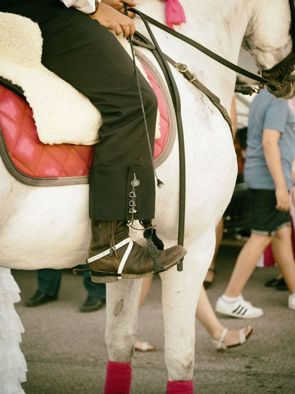 Boots Bridle Cultures Folk Festival Folklore Horse Horse Photography  Horseman Leisure Activity Mount Outdoors Rein Riding Boots Stirrup