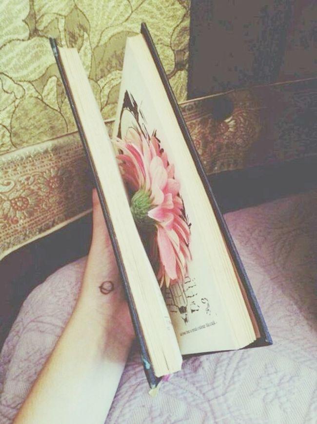 Book :* Hi!