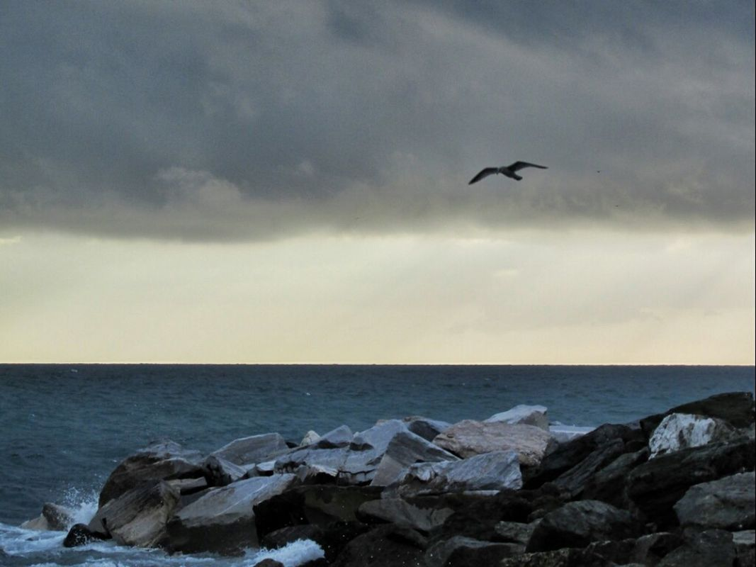 sea Seagulls clouds and sky simplicity eye4photography  by Simodenegri