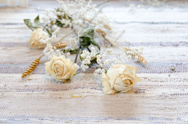 Flower Close-up Focus On Foreground Freshness Beauty In Nature Wave Flower Arrangement Tranquility No People Flower Head Fragility Petal Shore Dead Dead Flowers Dead Plant Roses Roses🌹 DeadRoses