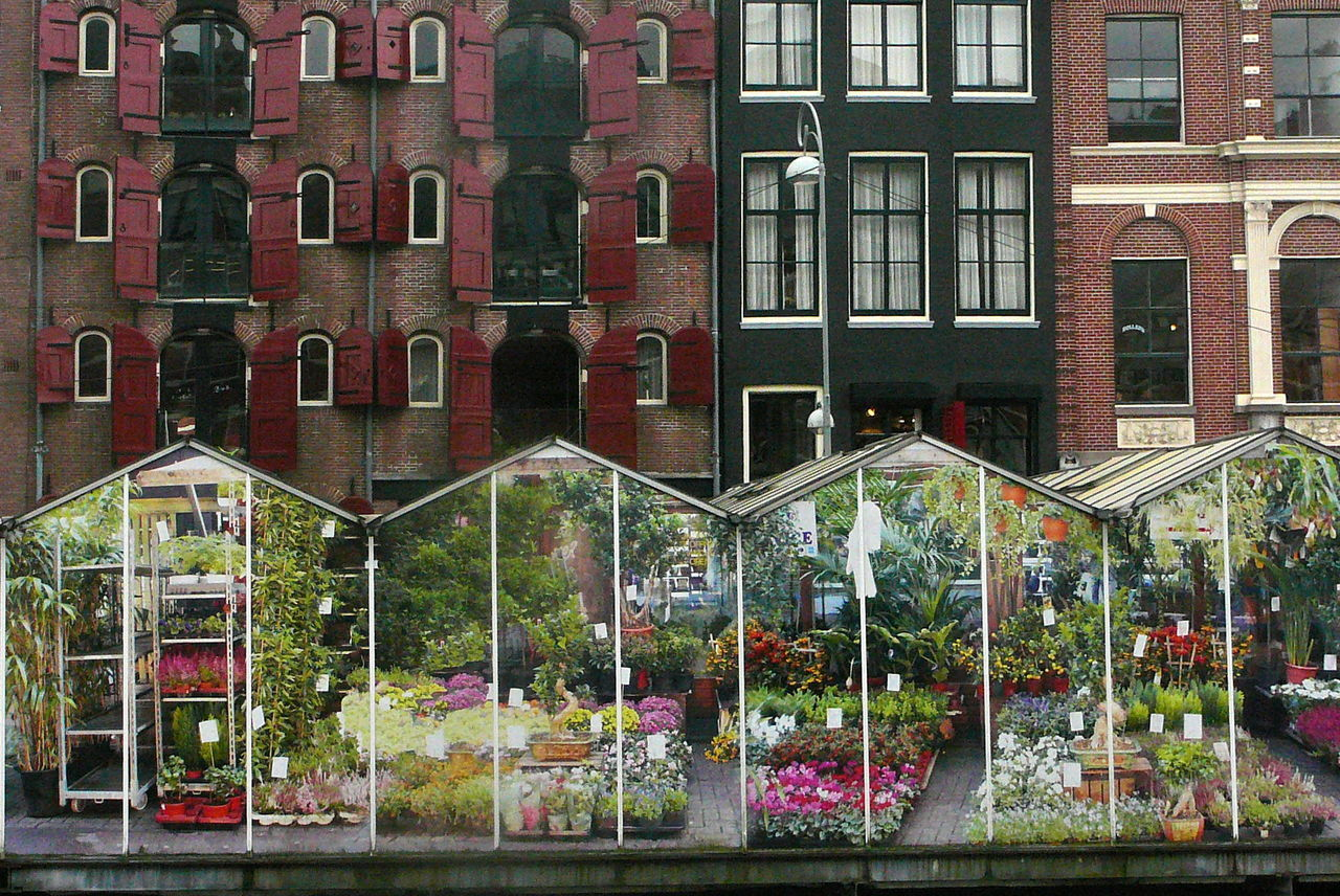 Flower Market Architecture Building Exterior Built Structure City Flower Greenhouse Large Photo Print No People Outdoors Water Windows