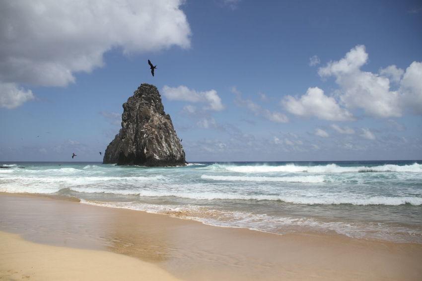 Ocean Rock Sea Summer Surf Tropical Climate Wave