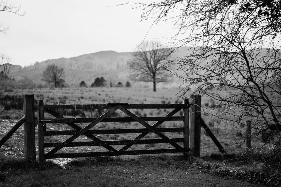 I like gates, rugby and alcholism. Wordsofwisdom Profound Gate Blackandwhite EyeEm Best Shots - Black + White Nature On Your Doorstep EyeEm Nature Lover Eye4photography  Love ♥ David Monochrome Taking Photos Photography Is My Escape From Reality! Perfection Is Always Frowned Upon From My Point Of View Showcase: February Atmospheric Mood Nature_collection