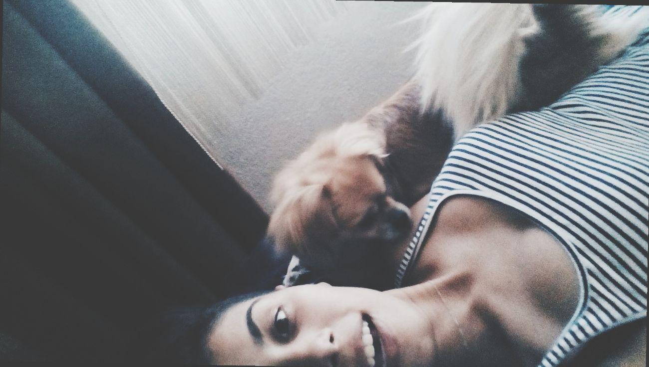 Daisy Aşk Dog MyGIRL