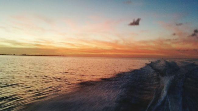 Sunset Sunset_collection sunset #sun #clouds #skylovers #sky #nature #beautifulinnature #naturalbeauty photography landscape Sunset #sun #clouds #skylovers #sky #nature #beautifulinnature #naturalbeauty #photography #landscape Taking Photos