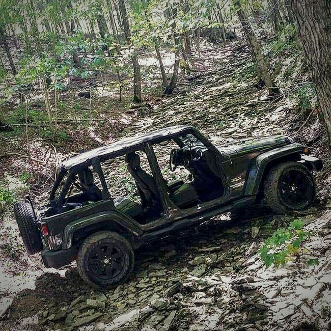 My Best Photo 2015 Jeep Life Jeep Wrangler Unlimited Sahara 4Door Tank Green Stock Creekbed Woods 4x4 Naked Jeep