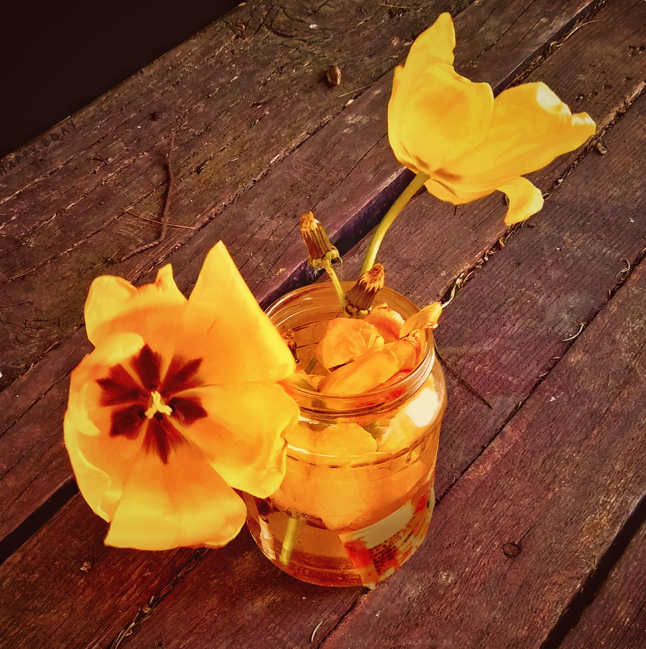 Gift for passerby Tulips Yellow Golden Jar Glass Table Wooden Old Spring Flowers Two Tulips Gift