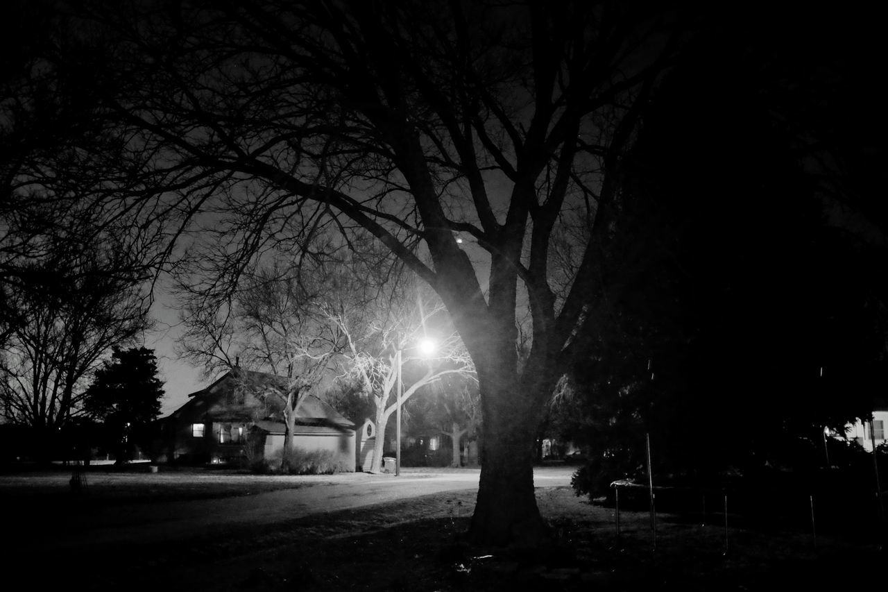 Visual Journal March 2017 Southeast Nebraska A Day In The Life America Bare Tree Black And White EyeEm Best Edits EyeEm Best Shots EyeEm Best Shots - Black + White EyeEm Gallery Film Noir Fujifilm_xseries Getty Images House Illuminated Mood Captures My Neighborhood Night Photography Night View Nightphotography No People Outdoors Photo Diary Streetlight Visual Journal