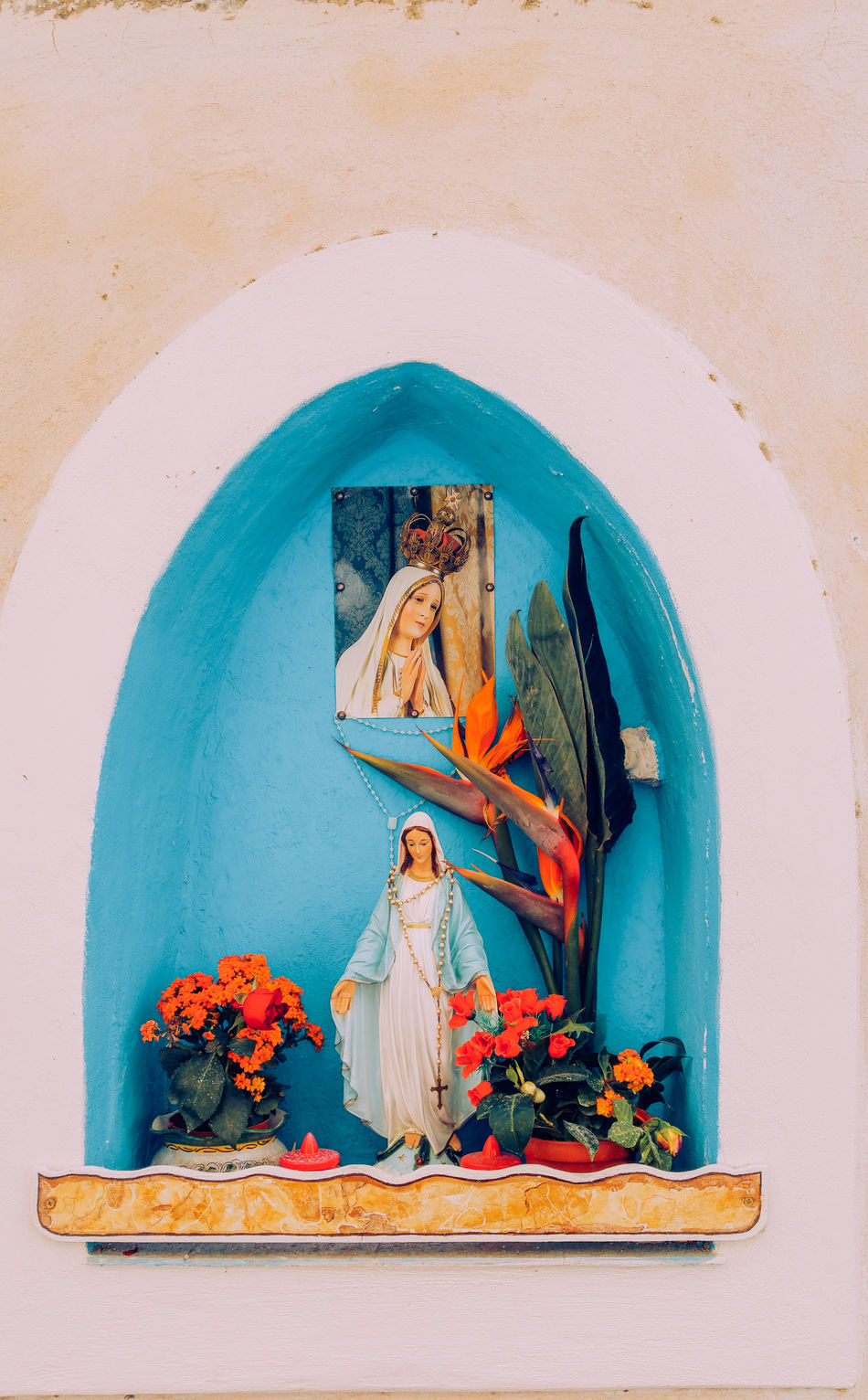 Devotional niche in a street of Procida island with madonna statue and flowers plant Architecture Art And Craft Bay Of Naples Creativity Day Devotion Devotional Female Likeness Flower Human Representation Madonna Male Likeness Naples, Italy Niche No People Procida Sculpture Statue Statue Street Streetphotography