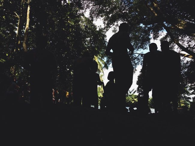 Silhouettes Forest Nature WoodLand Spring In The Mountains Remote Weekend Activities Tree Planting Swimming Saturday With Workmates Cold Water Trees Tree Canopy  Branches EyeEm Nature Lover Eyeem Philippines Iphoneonly